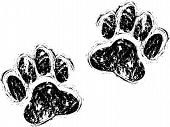 stock photo of animal footprint  - a set of two black dog paws - JPG