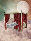 image of canopy  - princess bed in the sky with canopy - JPG