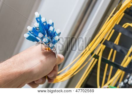 hand  of administrator holding bunch of optic fiber cables with connectors