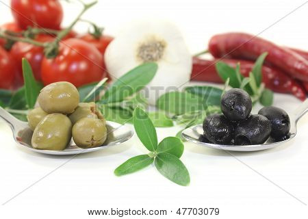 Olives With Olive Twig