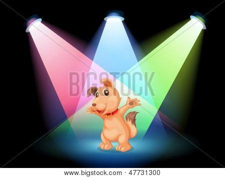Illustration of a dog with a red collar at the center of the stage