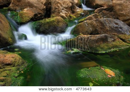 Beauty Of The Stream