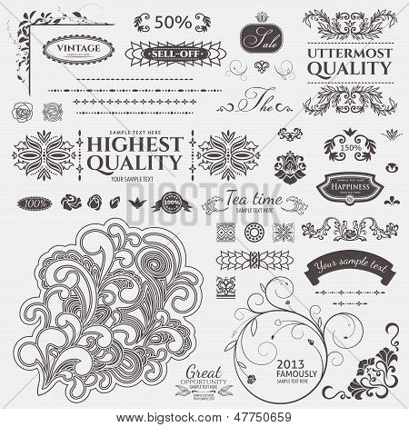 Scroll Design elements. Vector set: Floral and ornamental symbols