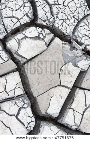 Gray Cracked Mud