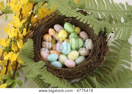 Birds Nest Of Jelly Bean Eggs With Flowers