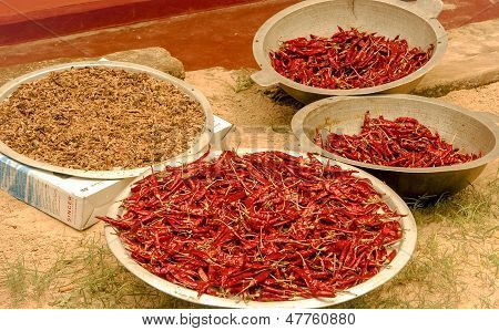 four bowls of chili peppers