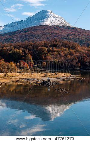Herbst In Patagonien. Cordillera Darwin, Tierra Del Fuego