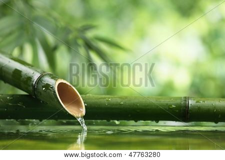 Traditional asian bamboo fountain