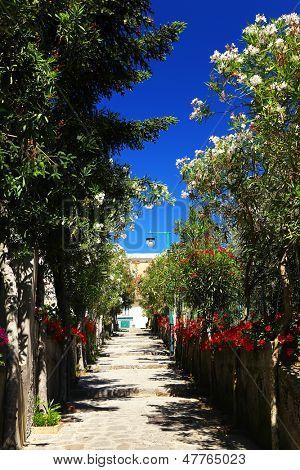 Street in Ravello, Amalfi Coast, Italy, Europe