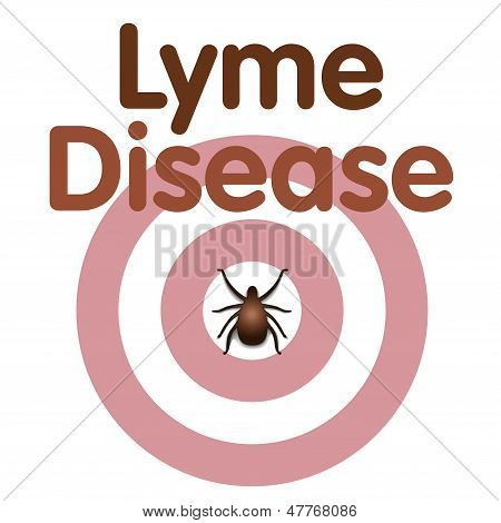 Lyme Disease, Tick, Bulls Eye Rash