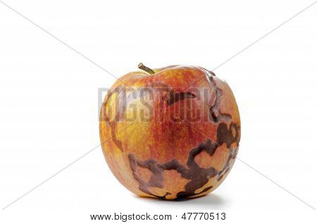 Magical apple closeup