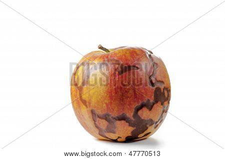 Magical apple closeup