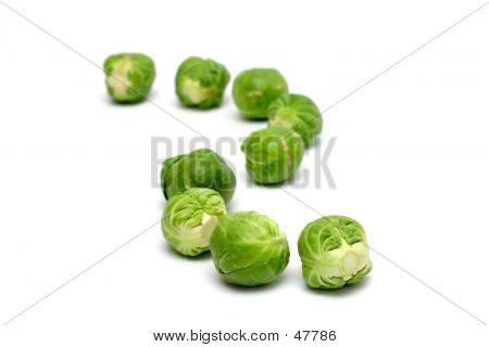 Brussel Sprouts In A Row