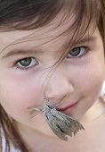 foto of hawk moth  - Hawk Moth on the mouth of a child - JPG