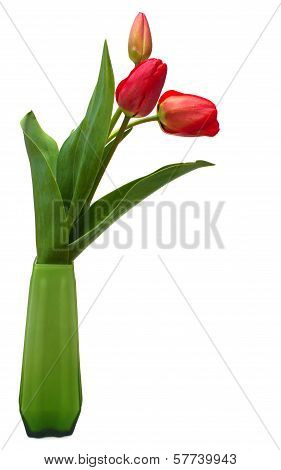 Red Tulips In Green Vase Isolated On White