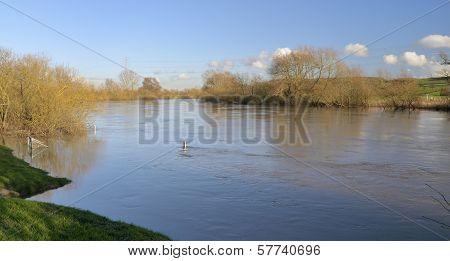 River Severn in flood at Ashlworth