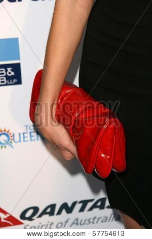 Caroline Pemberton's purse  at the Australians In Film 2009 Breakthrough Awards. Hollywood Roosevelt Hotel, Hollywood, CA. 05-08-09