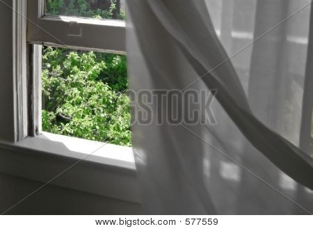 blowing_curtains