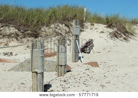 rope wrapped pier posts