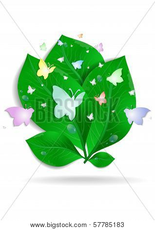 Green Leaves With Butterflies And Waterdrops