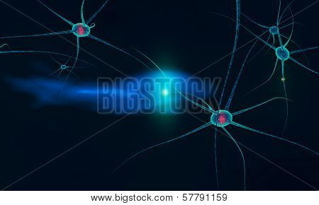Communication Between Neurons