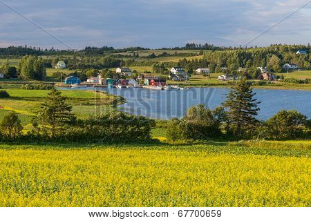 Summer landscape with canola fields and fishing  boats at French River in central Prince Edward Island, Canada