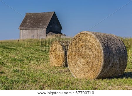 Hay bales in a field by an abandoned house in rural Prince Edward Island, Canada.
