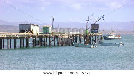 Bahia Tortuga Pier poster