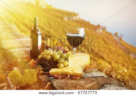 Red wine, cheese and grapes on the terrace vineyard in Lavaux region, Switzerland