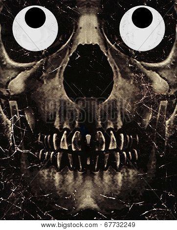 Skull Funny Expression