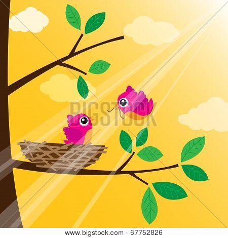 Loving bird feeding