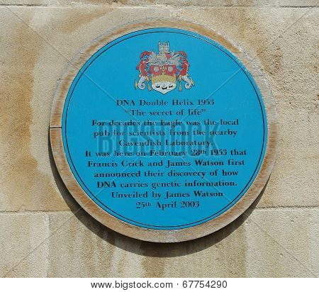 DNA Plaque Cambridge
