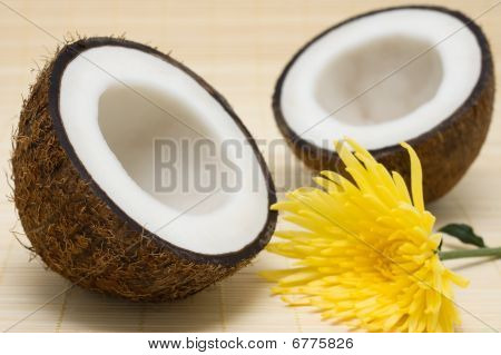 Two Half Coconut With A Yellow Flower On A Rug.
