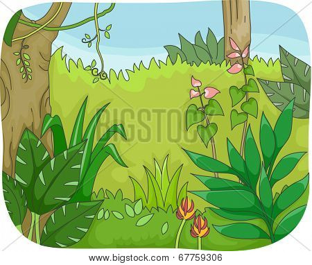 Illustration of a Forest with Lush Vegetation