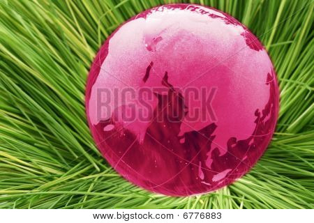 Glass Globe In Grass