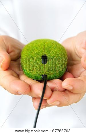hand holding eco mouse
