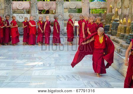 Tibetian Neophytes Line Up