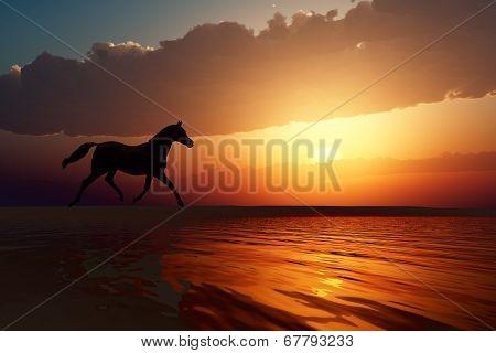Horse Walk Silhouette
