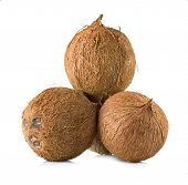 stock photo of coco  - Coconuts - JPG