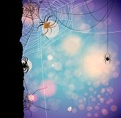 image of cobweb  - Festive autumn background with spiders - JPG
