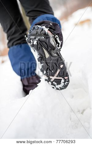 Hiker Walking On Snow In Winter Forest