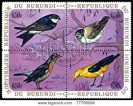 Vintage  Postage Stamp. Birds.