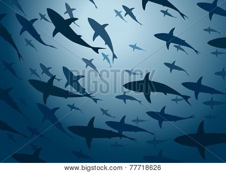 Editable vector illustration of a large school of cruising sharks from below