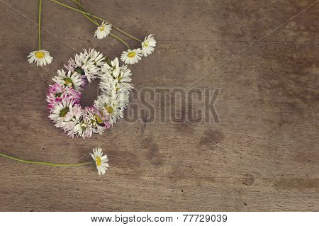 Wreath Of Daisies