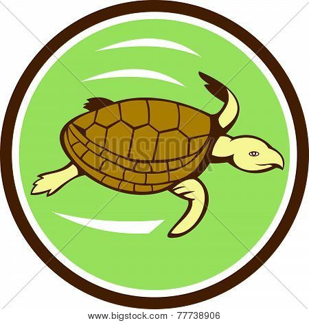 Sea Turtle Swimming Circle Cartoon
