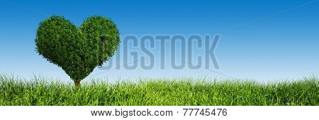 Heart shape tree on green grass field landscape. Panorama, banner. Love symbol, concept for Valentine's Day, wedding etc.