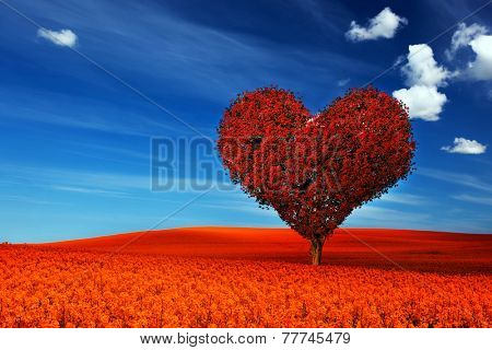 Heart shape tree with red leaves on red flower field. Love symbol, concept for Valentine's Day, wedding etc.