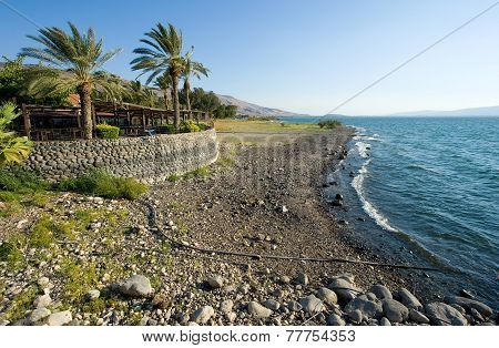 Beach Of Sea Of Galilee