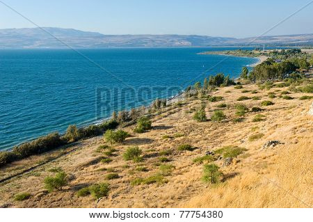 East Coast Of The Sea Of Galilee