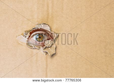 Hidden eye spying through torn hole in cardboard paper